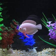 best price silicone aquarium artificial glowing tropical fish
