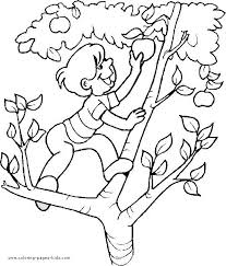 apple tree coloring page boy climbing an apple tree boy color page family people jobs
