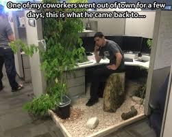 Cubicle Meme - office cubicle meme office cubicle meme brick