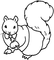 squirrel coloring pages 29208 bestofcoloring com