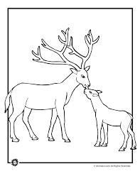 baby deer coloring woo jr kids activities