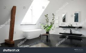 modern stylish black white attic bathroom stock illustration