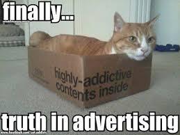 Advertising Meme - finally truth in advertising cute cat meme funny humor humor