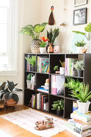 pick these artificial plants for fauxliage that doesn u0027t look so