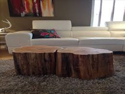25 best cypress images on coffee tables benches furniture tree coffee table beautiful 25 best ideas about tree