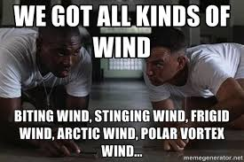 Wind Meme - coworkers response when walk miles to work in f wind chills having