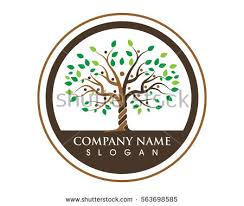 family tree symbol icon logo design stock vector 563698585