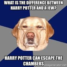 Jew Meme - what is the difference between harry potter and a jew harry potter