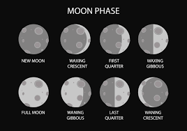 free moon phase vector free vector stock graphics