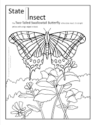 coloring pages of butterfly arizona state butterfly coloring page