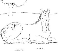 Dessins de Cheval à colorier