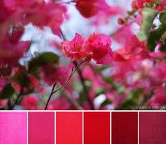 34 bästa bilderna om wedding color på pinterest tablescapes