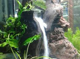 membuat aquascape bening cara membuat air terjun pasir didalam aquarium dengan mesin pompa