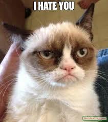 I Hate You Meme - i hate you meme grumpy cat reverse 10008 memeshappen