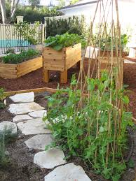 design therapeutic garden for recovery gardenerd