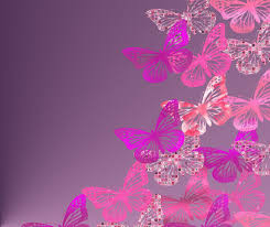 butterfly wallpaper 8 trending desktop wallpaper