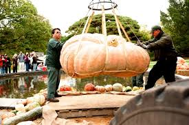 New York Botanical Garden Pumpkin Carving by Giant Pumpkin Carving Weekend At Nybg Heydoyou
