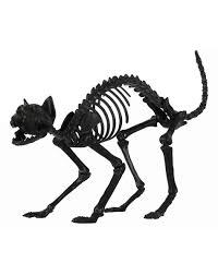 black skeleton cat u2013 spirit halloween props to ya