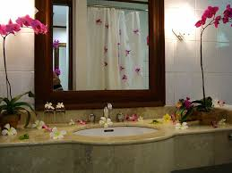 design ideas 62 excellent decorative bathroom ideas on house