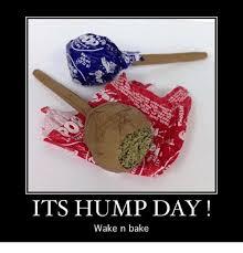Hump Day Meme Dirty - its hump day wake n bake hump day meme on me me