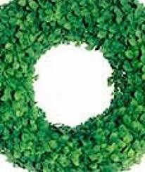 styrofoam wreath styrofoam wreath ring 10 in extruded wreath form