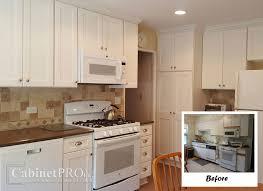 Pro Kitchens Design Design Gallery Cabinets Kitchen And Bathroom Design Photos