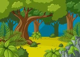 jungle tree vectors photos psd files free download