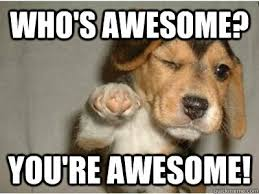 Awesome Meme Quotes - awesome meme