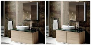 Mirrored Cabinets Bathroom Sophisticated Bathroom Vanity Mirror Cabinets Cabinet With Door