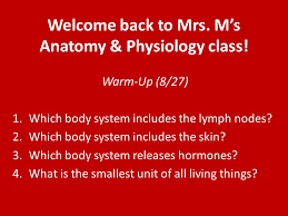 Anatomy And Physiology Of The Back Welcome Back To Mrs M U0027s Anatomy U0026 Physiology Class Ppt Download