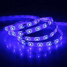 Rv Led Strip Lights by Amazon Com Xkttsueercrr Waterproof Blue Led 3528 Smd 300led 5m