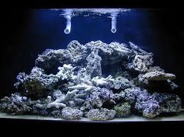 Aquascape Aquarium Designs Aquascape Designs With Best Style U2014 Unique Hardscape Design