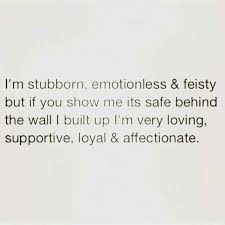 Definition Of Vanity I U0027m Stubborn Emotionless And Feisty But If You Show Me It U0027s Safe