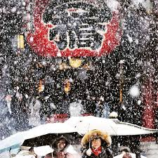 Snow Falls In Tokyo For The First Time In November Since 1962 by 2055 Best Japon Asia Images On Pinterest Castles Cute Photos