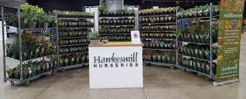 british native plants hawkesmill nurseries on twitter