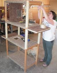 Build A Wood Shelving Unit by Best 25 Wooden Shelving Units Ideas On Pinterest Bathroom