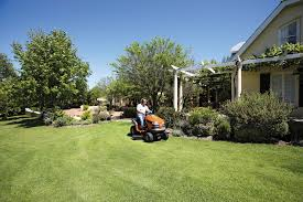lawn care maintenance for spring summer fall and winter spring
