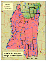 Jackson Ms Map Alligator Program
