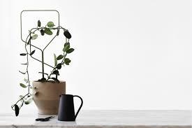 lipa product design studio macura nederlands