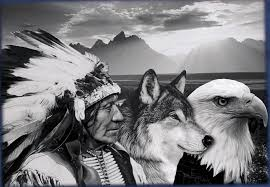 wolf eagle indian