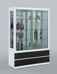 Curio Cabinet With Glass Doors Design Ideas Modern Curio Cabinets Outdoor Fiture