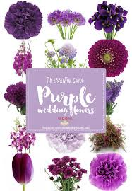 Wedding Flowers Guide Complete Guide To Purple Wedding Flowers Purple Flower Names Pics