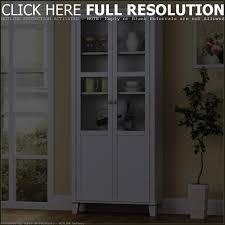 diy aqua storage cabinet image with astonishing tall wood storage