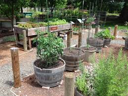 creative container gardens togetherfarm