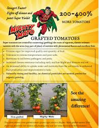 30 best native plant reference product categories mighty u0027mato grafted tomatoes sugar creek