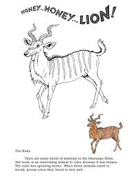 honey lion coloring pages the kudu