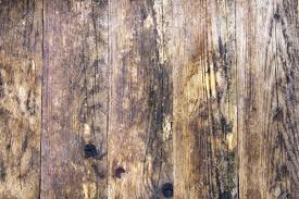 natural old pine wood floors stock photo picture and royalty free