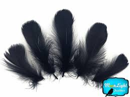 moonlight feathers 59 best interesting wedding corsage and boutionneers images on