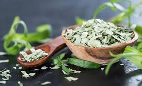 huile essentielle cuisine l huile essentielle d estragon contre les douleurs sciatiques