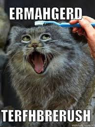 Ermagerd Meme - ermahgerd meme girl on what it s like to be a meme